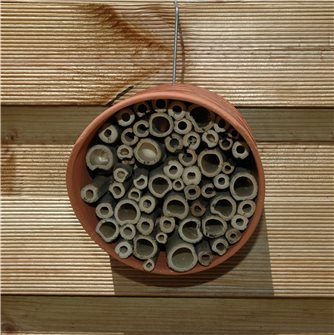 Hotel for solitary bees and bumble bees